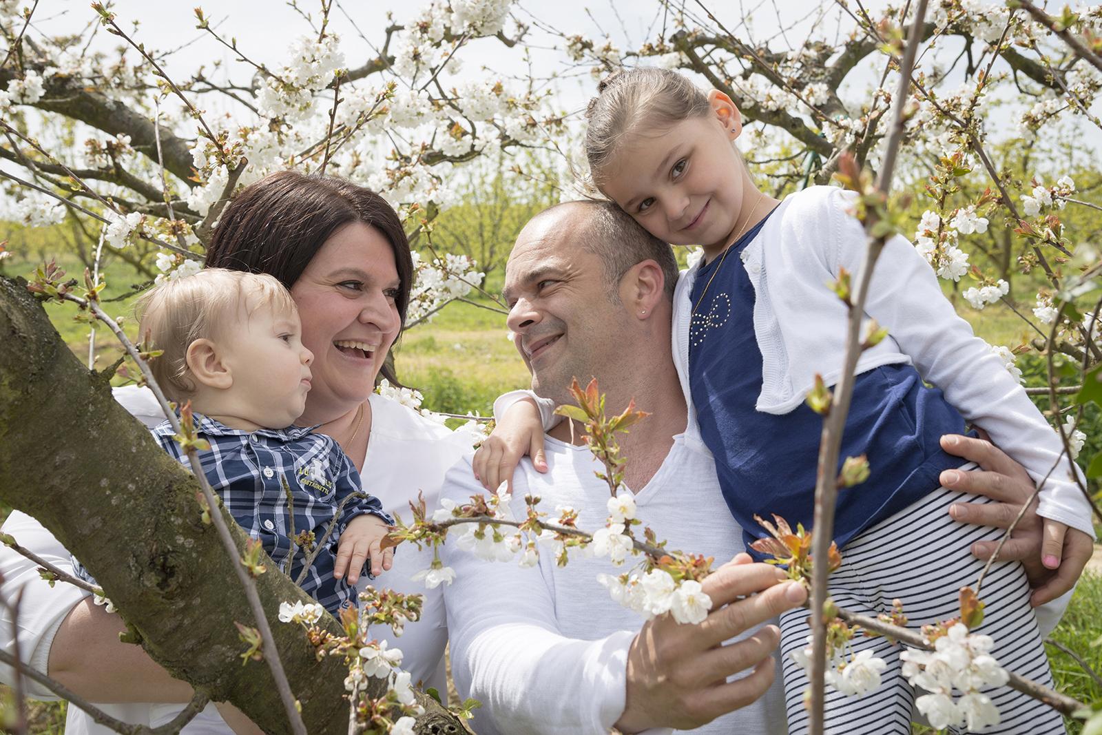 famille dans les vergers en fleurs