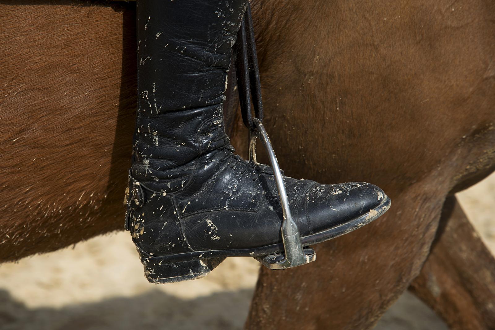 identité visuelle centre equestre