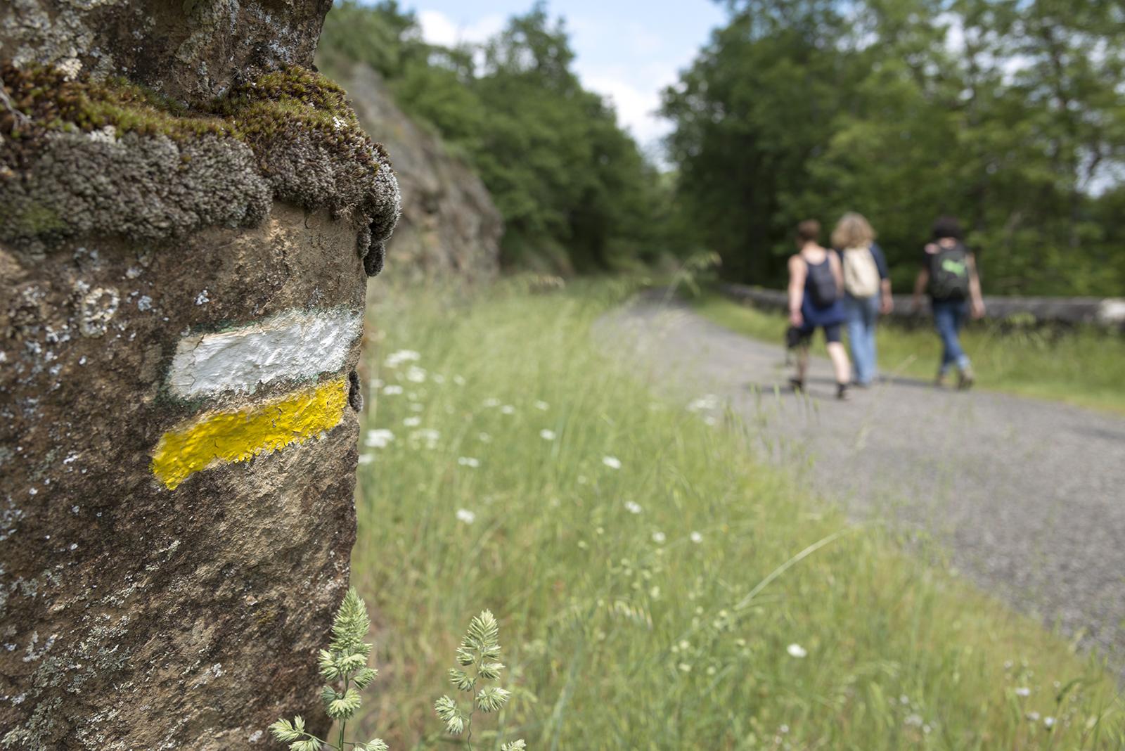 identité visuelle office de tourisme ardeche grand air sentiers de randonnées