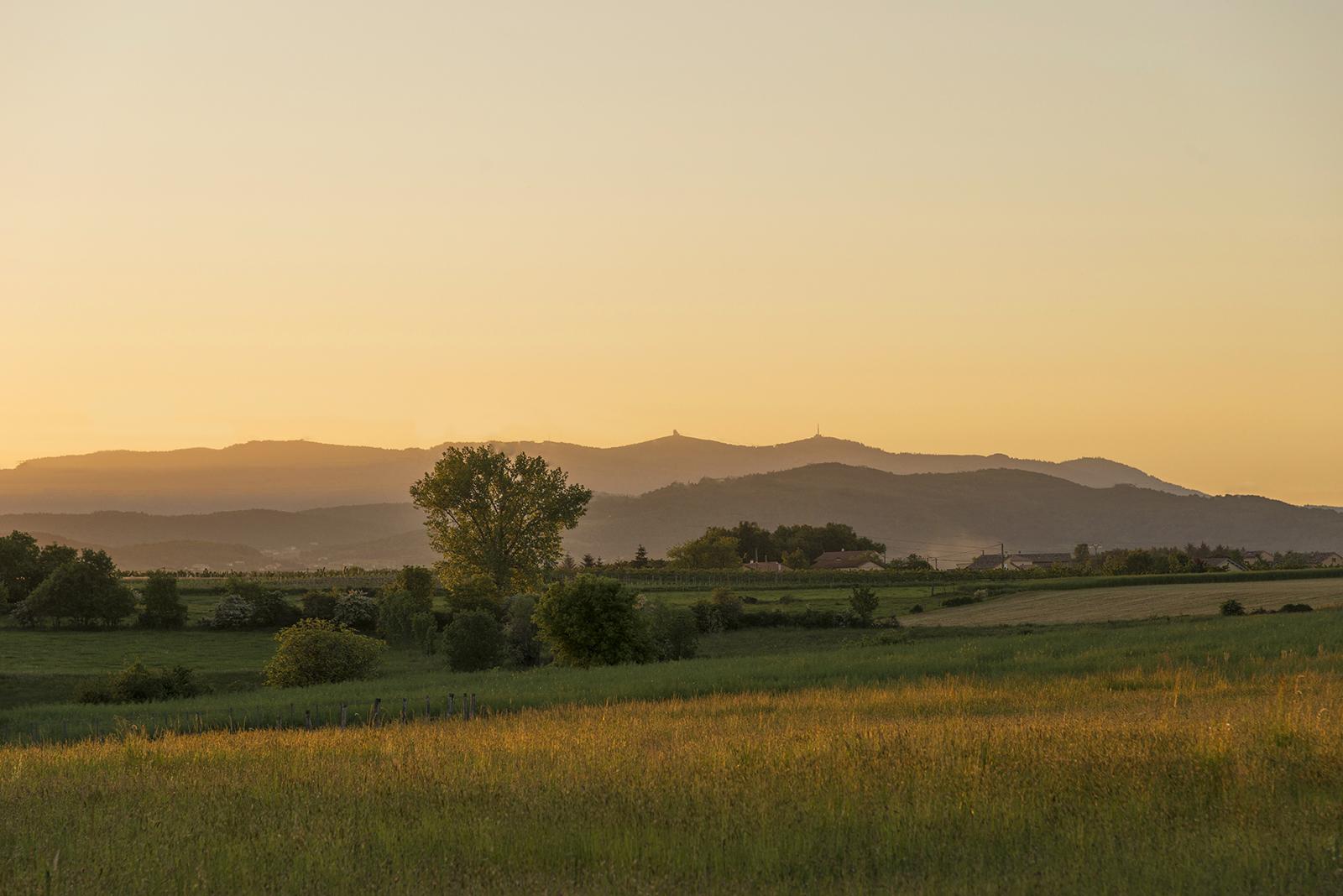 paysage au soliel couchant